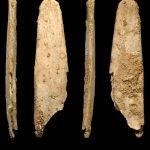 Huesos 150x150, Planeta Incógnito